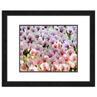 Photo File Orchid Flowers Framed Photo Wall Art