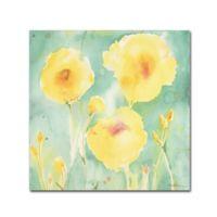 Trademark Fine Art 20-Inch x 15-Inch Tropical Dreams Canvas Wall Art