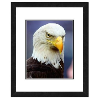 Buy Eagle Wall from Bed Bath & Beyond