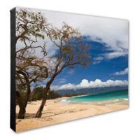 Beach 16-Inch x 20-Inch Canvas Photo Wall Art