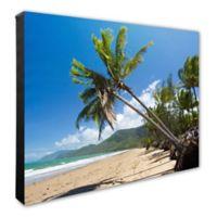 Beach Palm Trees 20-Inch x 24-Inch Photo Canvas Wall Art