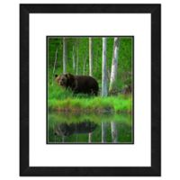 Bear Near Lake 18-Inch x 22-Inch Framed Wall Art