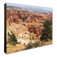 Bryce Canyon, Utah 16-Inch x 20-Inch Canvas Wall Art