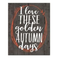 "Designs Direct ""I Love These Golden Autumn Days"" 20-Inch x 16-Inch Canvas Wall Art"