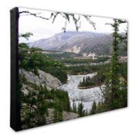 Denali National Park 16-Inch x 20-Inch Photo Canvas Wall Art