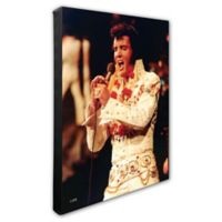 Elvis Presley Photo One 16-Inch x 20-Inch Canvas Wall Art