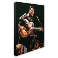 Elvis Presley Photo Two 16-Inch x 20-Inch Canvas Wall Art