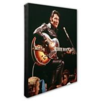 Elvis Presley Photo Two 20-Inch x 24-Inch Canvas Wall Art