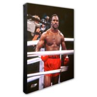 Evander Holyfield in Ring 20-Inch x 24-Inch Photo Canvas Wall Art