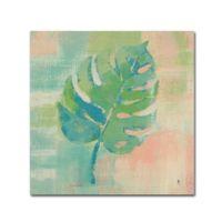 Trademark Fine Art Studio Mousseau Beach Cove Leaves 24-Inch Square Canvas Wall Art