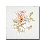 Trademark Fine Art Watery Blooms VI 14-Inch Square Canvas Multicolor Wall Art