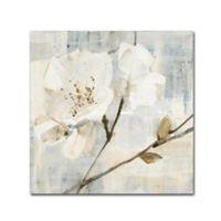 Trademark Fine Art Elegance I 24-Inch Square Canvas Wall Art