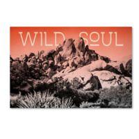Trademark Fine Art Elizabeth Urquhart Ombre Adventure II Wild Soul 12-Inch x 19-Inch Canvas Wall Art