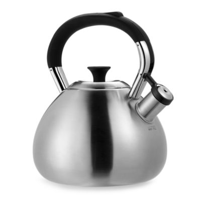 Bed Bath And Beyond Brushed Stainless Steel Teapot