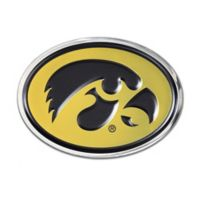 University of Iowa Oval Hawkeye Logo Wall Art in Black/Gold