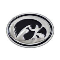 University of Iowa Oval Hawkeye Logo Wall Art in Black/Chrome