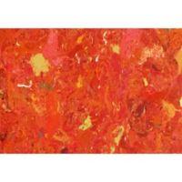 Liora Manne Visions I Quarry 18-Inch x 29.5-Inch Indoor/Outdoor Accent Rug in Orange