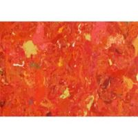 Liora Manne Visions I Quarry 2-Foot 5-Inch x 4-Foot Indoor/Outdoor Accent Rug in Orange