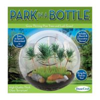 DuneCraft Park in a Bottle Glass Terrarium