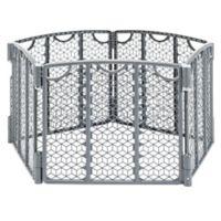 Evenflo® Versatile Play Space in Grey