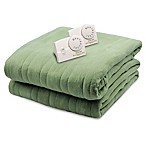 Biddeford® Comfort Knit Analog Heated Queen Blanket in Sage