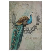 Yosemite Home Décor Peacock Poise I Mixed Media 24-Inch x 35-Inch Canvas Wall Art