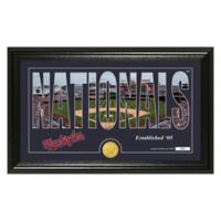 "MLB Washington Nationals ""Silhouette"" Panoramic Stadium Bronze Coin Photo Mint"