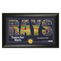 "MLB Tampa Bay Rays ""Silhouette"" Panoramic Stadium Bronze Coin Photo Mint"