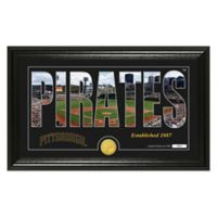 "MLB Pittsburgh Pirates ""Silhouette"" Panoramic Stadium Bronze Coin Photo Mint"