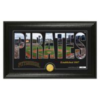 """MLB Pittsburgh Pirates """"Silhouette"""" Panoramic Stadium Bronze Coin Photo Mint"""