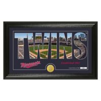 "MLB Minnesota Twins ""Silhouette"" Panoramic Stadium Bronze Coin Photo Mint"