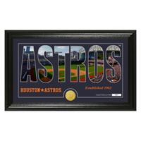 "MLB Houston Astros ""Silhouette"" Panoramic Stadium Bronze Coin Photo Mint"