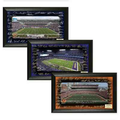 NFL Signature Gridiron Photo