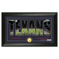 "NFL Houston Texans ""Silhouette"" Bronze Coin Panoramic Photo Mint"