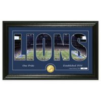 "NFL Detroit Lions ""Silhouette"" Bronze Coin Panoramic Photo Mint"