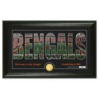"NFL Cincinnati Bengals ""Silhouette"" Bronze Coin Panoramic Photo Mint"