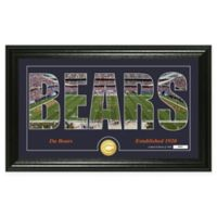 "NFL Chicago Bears ""Silhouette"" Bronze Coin Panoramic Photo Mint"