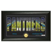 "NFL Carolina Panthers ""Silhouette"" Bronze Coin Panoramic Photo Mint"