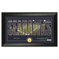 "NFL Seattle Seahawks ""Silhouette"" Bronze Coin Panoramic Photo Mint"