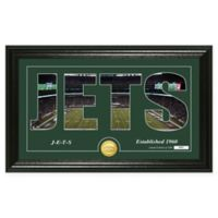 "NFL New York Jets ""Silhouette"" Bronze Coin Panoramic Photo Mint"