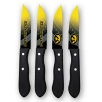University of Iowa 4-Piece Stainless Steel Steak Knife Set