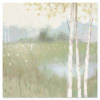 Spring Fling II 18-Inch x 18-Inch Canvas Wall Art