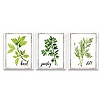 Watercolor Herbs I 3-Pack Printed Canvas Wall Art