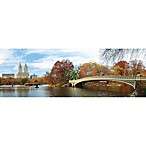 Elementem Photography Central Park Autumn 20-Inch x 60-Inch Canvas Wall Art