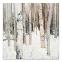 Warm Winter Light I 18-Inch x 18-Inch Canvas Wall Art