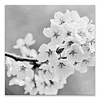 Postcard Magnolia 18-Inch x 18-Inch Canvas Wall Art