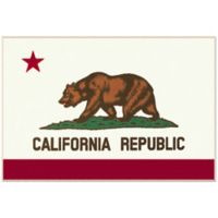 State of Mind 3-Foot 3-Inch x 5-Foot California State Flag Rug in White