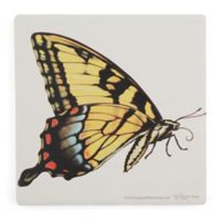 Thirstystone® Dolomite Tiger Swallowtail Butterfly Square Single Coaster