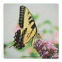Thirstystone® Dolomite Yellow Swallowtail Painted Square Single Coaster