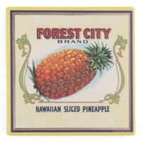 Thirstystone® Dolomite Forest City Pineapples Square Single Coaster